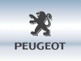 Пороги Peugeot