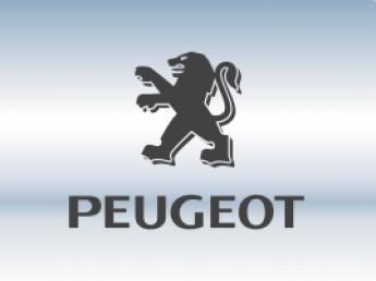 Накладки на задний бампер Peugeot