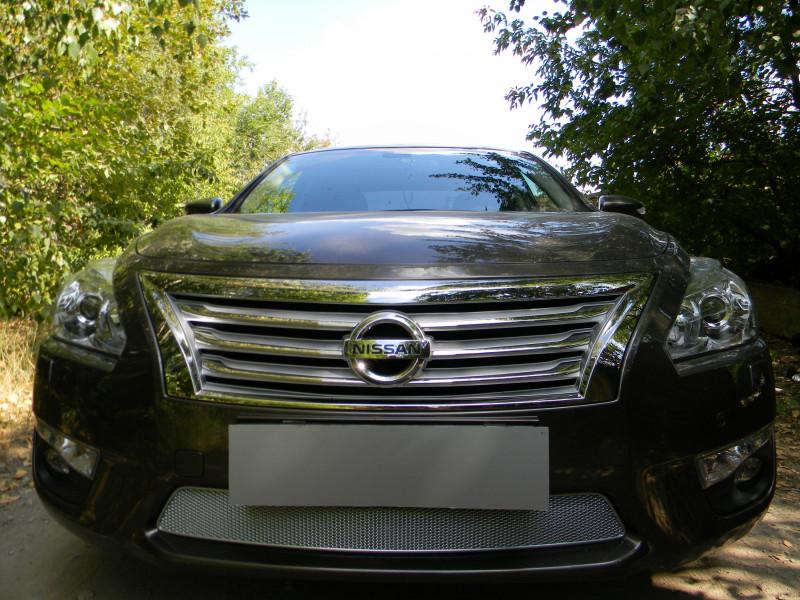 Защита радиатора Nissan Teana L33 2014-2021 ПРЕМИУМ