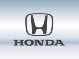 Защитная сетка радиатора Honda
