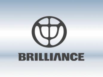 Защитная сетка радиатора Brilliance