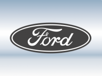 Защитная сетка радиатора Ford