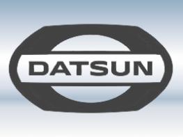 Защитная сетка радиатора Datsun