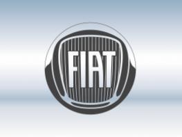 Защитная сетка радиатора FIAT