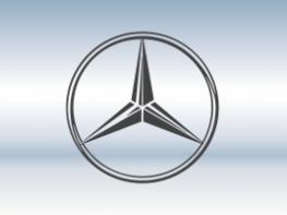 Защитная сетка радиатора Mersedes-Benz