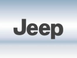 Защитная сетка радиатора Jeep