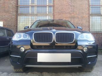 Защитная сетка радиатора ПРЕМИУМ BMW X6