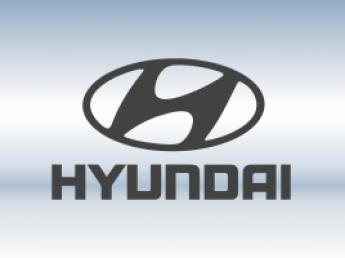 Защитная сетка радиатора Hyundai