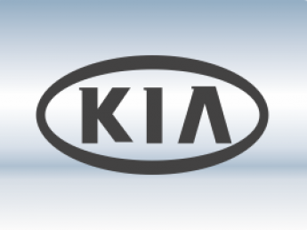 Защитная сетка радиатора Kia