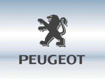 Защитная сетка радиатора Peugeot
