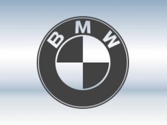 Защитная сетка радиатора BMW